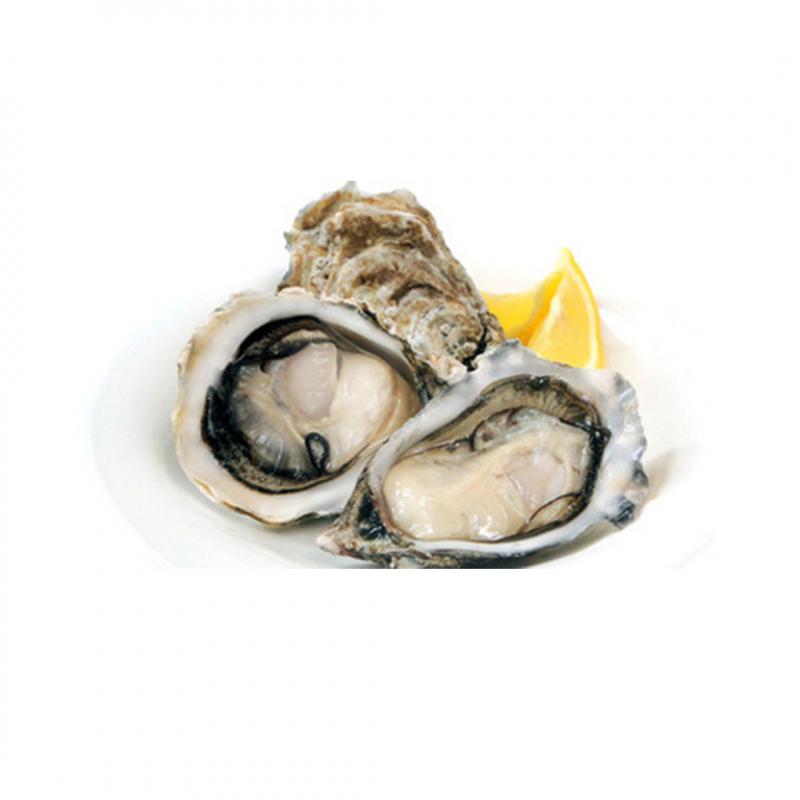 南非生蠔 / Saldanha Bay Oyster